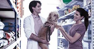 Pet Shops